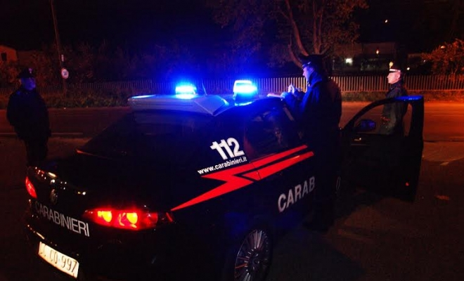 Piante di cannabis sequestrate e denunce